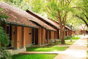 cottages - Chaaya Village - Habarana - Sri Lanka