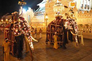 versierde olifanten Perahera festival - Kandy - Sri Lanka