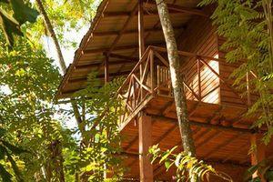 Buitenaanzicht van de Polwaththa Ecolodge - Polwaththa Ecolodge - Sri Lanka