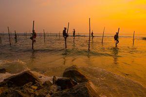 Vissermannen op palen in de ochtend, Sri Lanka - Sri Lanka