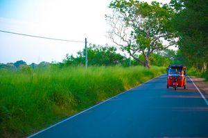Rode Tuk-Tuk op de weg van Sri Lanka - Sri Lanka