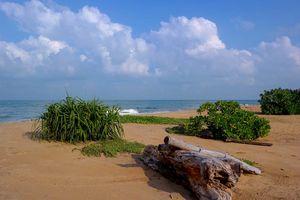 strand in Kalpitiya