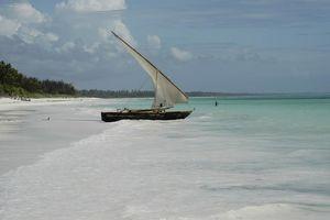 strand - Ocean Paradise - Zanzibar - Tanzania