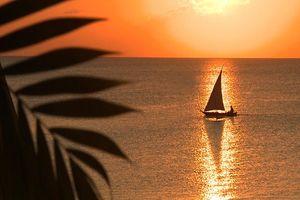 zeilboot Z hotel - Z hotel - Zanzibar - Tanzania