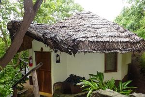 kigongoni lodge - kigongoni lodge - Tanzania