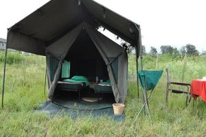 Tent - Kampeersafari - Tanzania