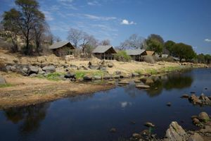 Chalets van Ruaha Rivier Lodge - Ruaha Rivier Lodge - Tanzania