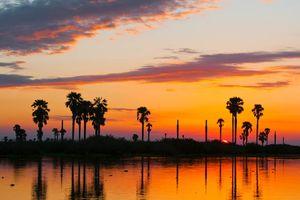 Lake Manze, Selous - Lake Manze - Tanzania