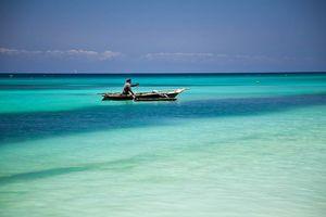 Flame Tree Cottages, zee van Zanzibar - Zanzibar - Tanzania