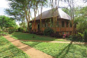 Eileen's Trees Inn - Eileen's Trees Inn - Tanzania