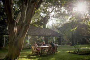 tuin van Ilboru Safari Lodge - Ilboru Safari Lodge - Tanzania - foto: Ilboru Safari Lodge