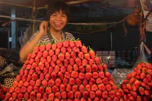 avondmarkt aardbeien - Chiang Mai - Thailand