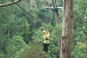 Flight of the Gibbon - Chiang Mai - Thailand