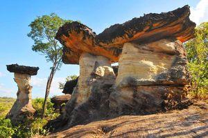 thailand pha taem national park ubon ratchathani - pha taem national park ubon ratchathani - Thailand
