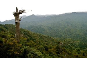 uitzicht - Yakushima - Japan - foto: flickr
