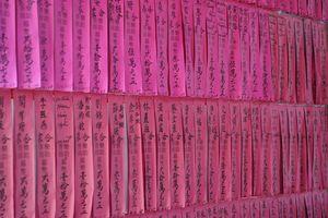 roze papiertjes - Vietnam