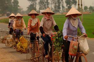 fietsende vrouwen in omgeving Hanoi - Noord-Vietnam - Vietnam