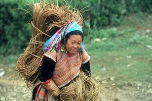 Hmong vrouw