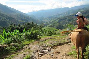 Kind op een buffel in Mu Cang Chai - Mu Cang Chai - Vietnam