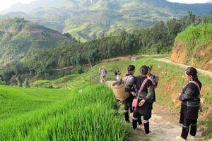 Lokale Hmong dames tijdens een wandeling in Sapa - Sapa - Vietnam