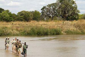 Wandeling tijdens safari - Zambia