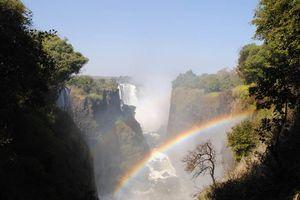 regenboog bij Victoria Falls - Victoria Falls - Zimbabwe