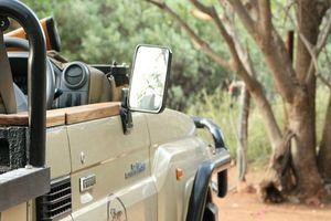 jeep Mohlabetsi Safari Lodge - Balule Game Reserve - Zuid-Afrika