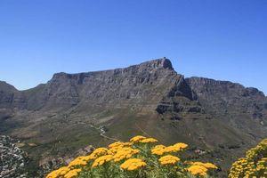 Uitzicht op de Tafelberg vanaf Lion's Head - Camps Bay - Zuid-Afrika