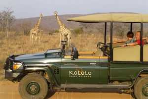 Met de jeep in het Kololo Game Reserve - Kololo Lodge - Zuid-Afrika