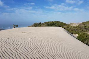 De hoop Nature Reserve - landschap (2) - De hoop Nature Reserve - Zuid-Afrika