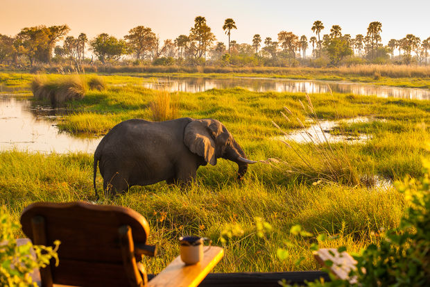 Delta Camp in Okavango Delta - Botswana