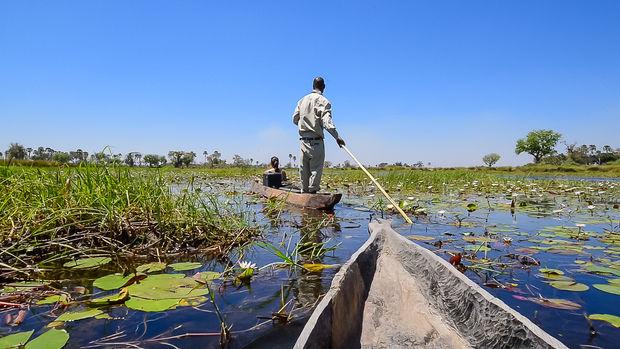 Mokoro Oddballs Camp in de Okavango Delta - Botswana