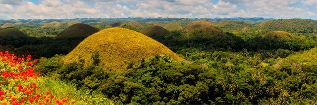 Chocolate Hills - Bohol - Filipijnen -Nieuws