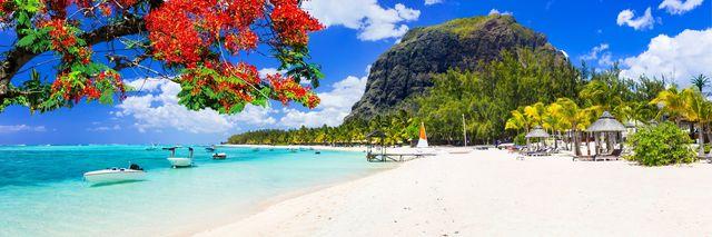 Reisadviespagina - Mauritius