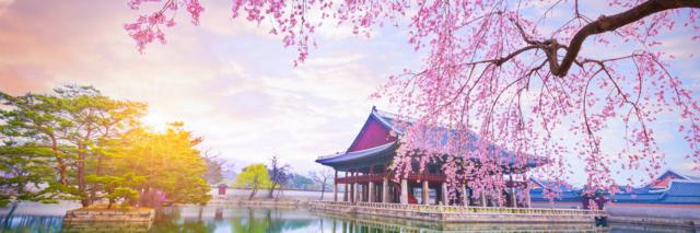 Reisadviespagina - Zuid-Korea