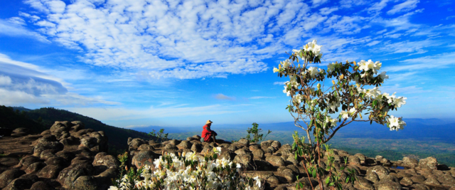 hike Thung Salaeng Luang National Park - Phitsanulok - Thailand - copyright: TAT