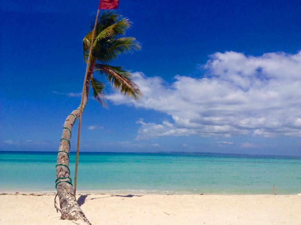 Bantayan Island - Cebu - palmboom op strand - Filipijnen - CTTO - Intas